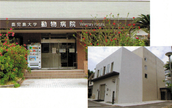 veterinary_teaching_hospital1.png