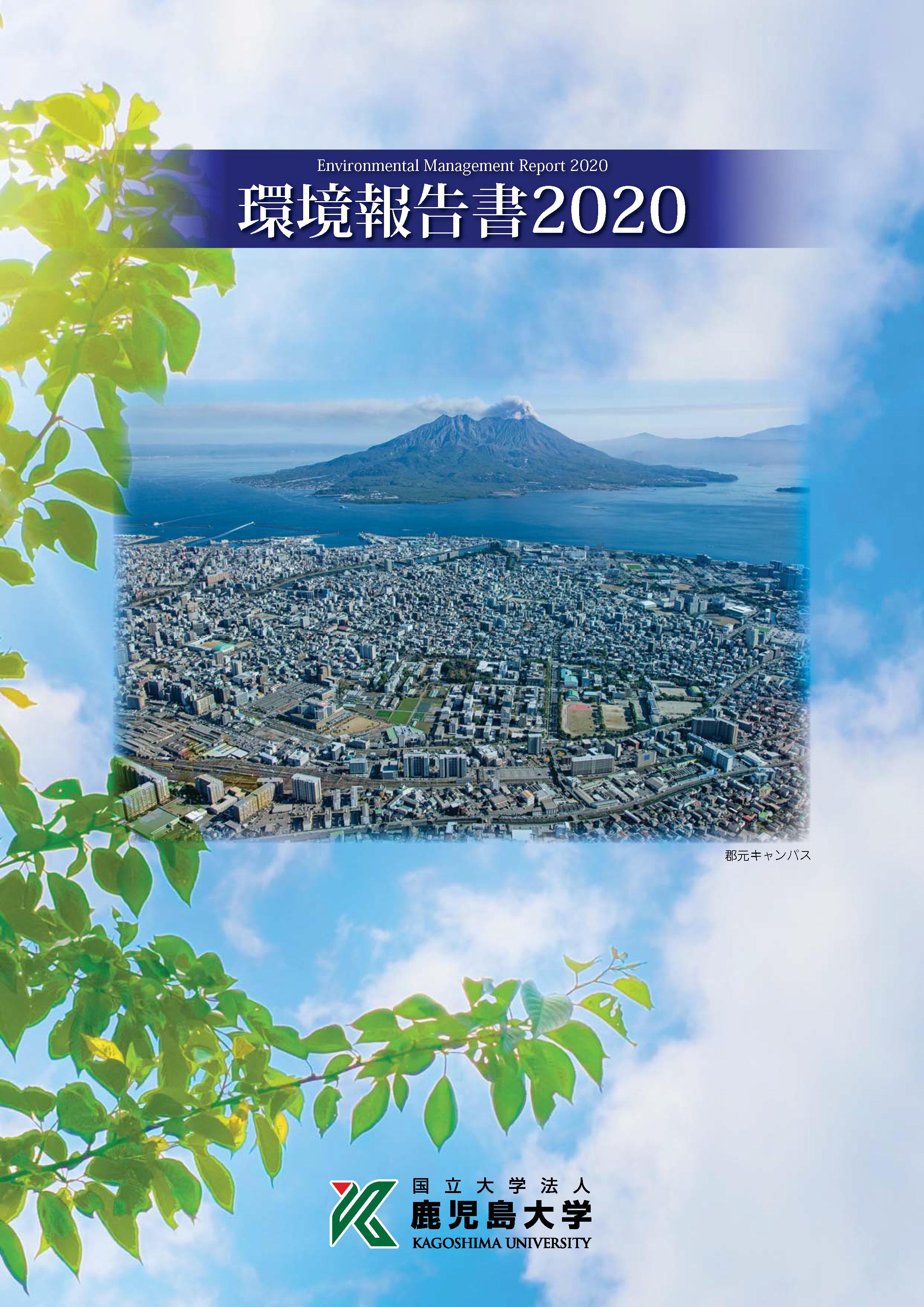 2020kankyouhoukokusyo.jpg