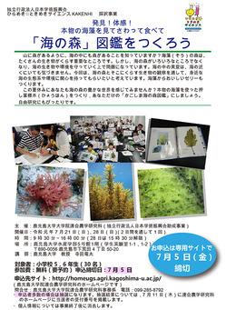 190721uminomori_zukan_poster-pic01.jpg