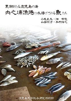illastration-fish.jpg