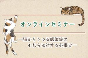【オンラインセミナー】猫からうつる感染症とそれらに対する心がけ