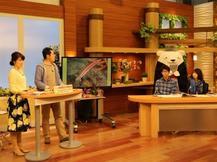 MBCテレビ「かごしま4」 で、新種の魚を発見した学生さんを紹介しました。
