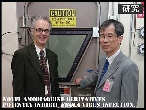 【研究成果】エボラウイルス病に対する治療薬候補となる新規化合物を同定