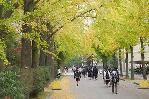 秋のオープンキャンパスを開催